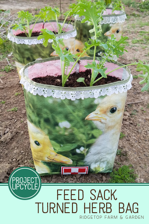 Ridgetop Farm and Garden | DIY | Feed Sack to Herb Bag