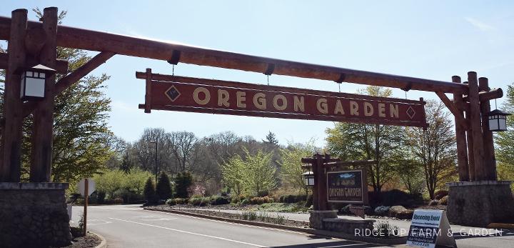 Ridgetop Farm and Garden | Oregon Garden