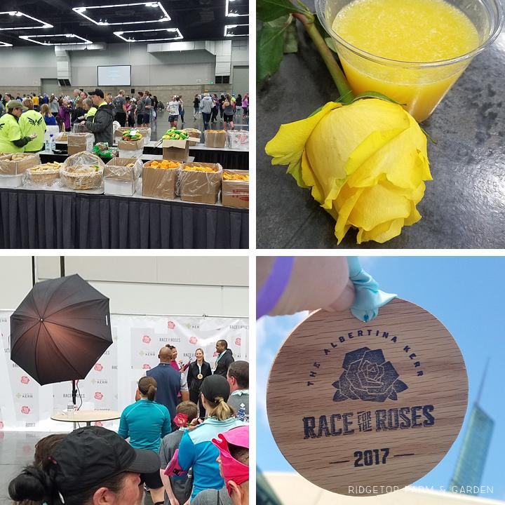 Ridgetop Runner | 2017 Race Recap | Race for the Roses