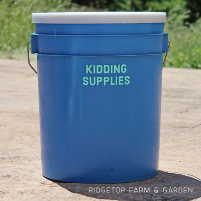 Kidding Supplies Bucket