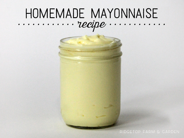 Ridgetop Farm and Garden   Recipe   Mayonnaise