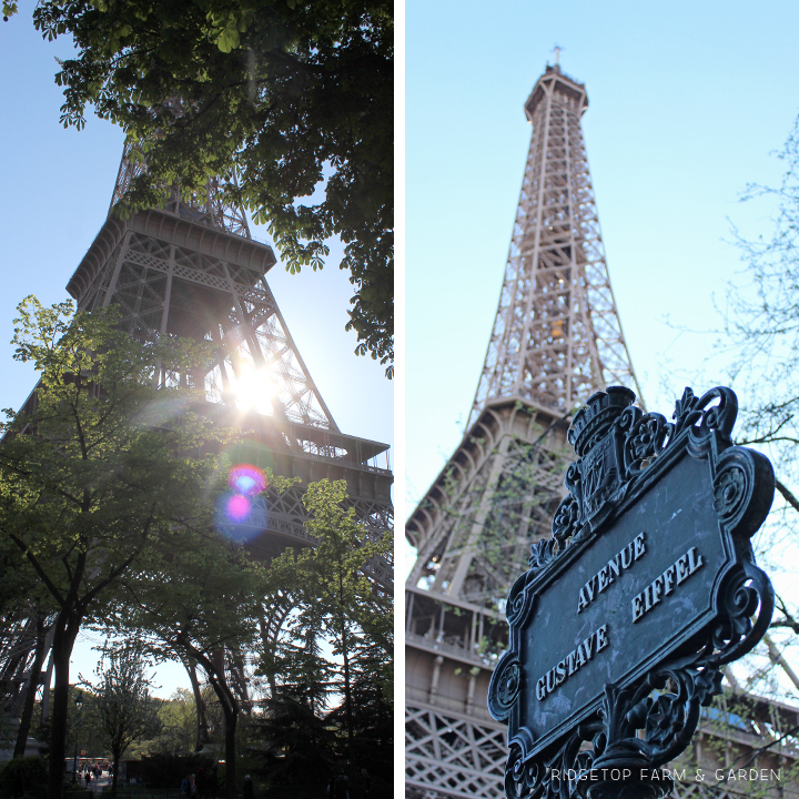 Ridgetop Farm and Garden | Travel | Europe | Paris | Eiffel Tower