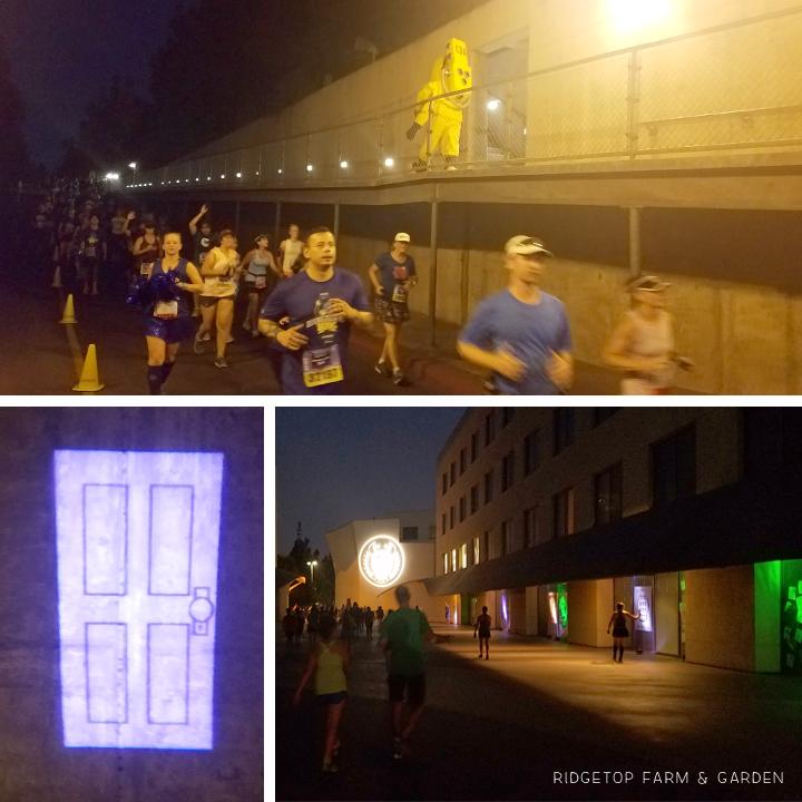 Ridgetop Runner | 2017 Race Recap | Disneyland 10K