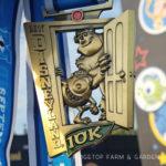 2017 Race Recap – Disneyland 10K