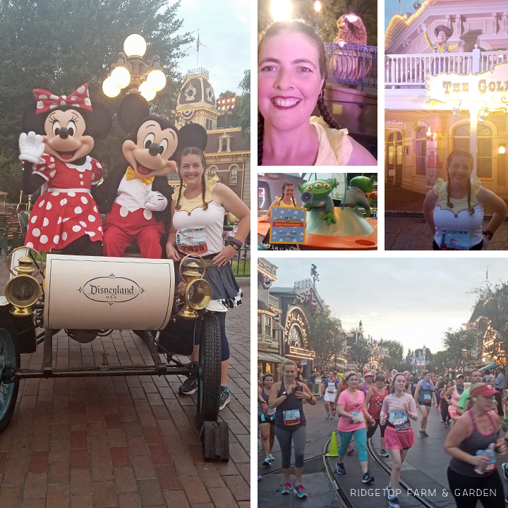 Ridgetop Runner | 2017 Race Recap | Disneyland Half Marathon | 40th Birthday
