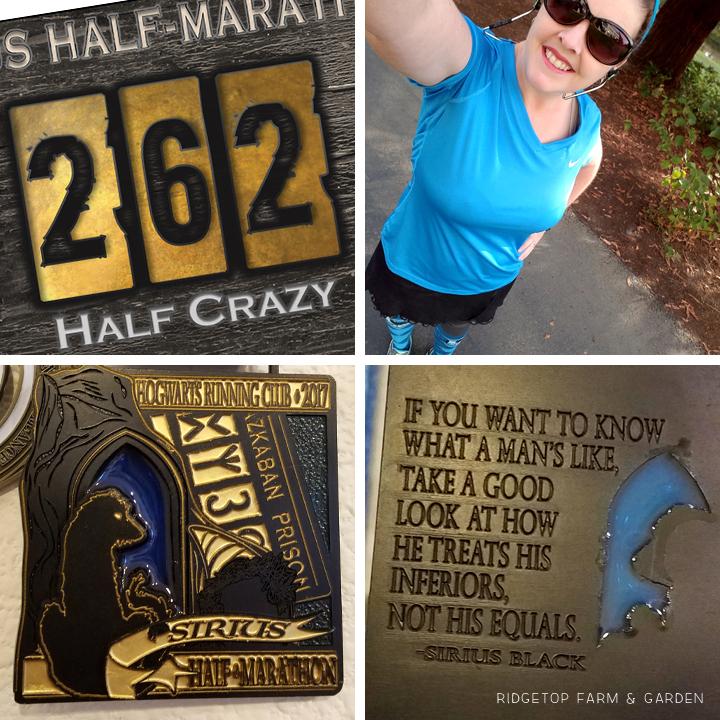 Ridgetop Runner | 2017 Race Recap | Hogwarts Running Club | Sirius Half Marathon