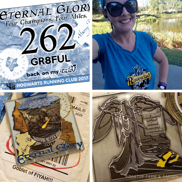 Ridgetop Runner | 2017 Race Recap | Hogwarts Running Club | Eternal Glory 4 mile