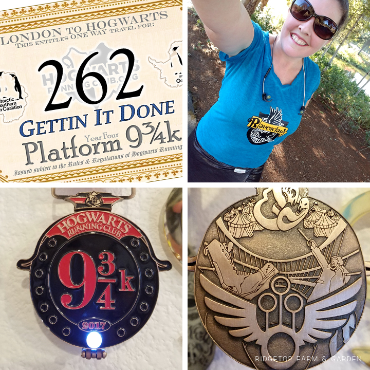 Ridgetop Runner | 2017 Race Recap | Hogwarts Running Club | Platform 9 3/4k