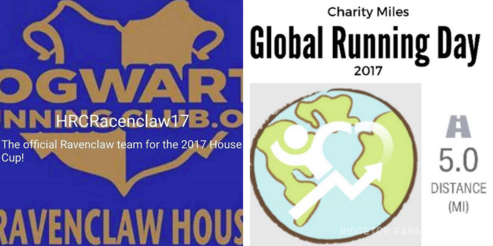 Ridgetop Runner | 2017 Race Recap | Hogwarts Running Club | Charity Miles