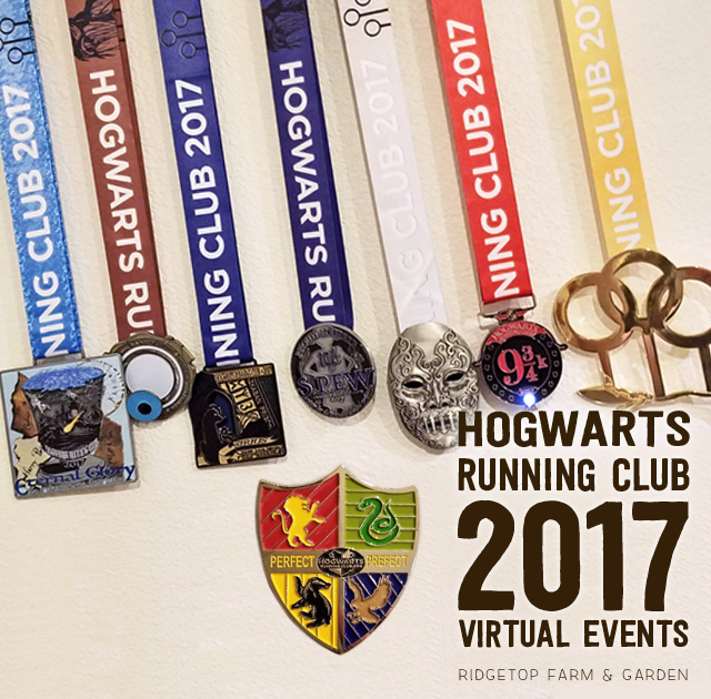 Ridgetop Runner | 2017 Race Recap | Hogwarts Running Club