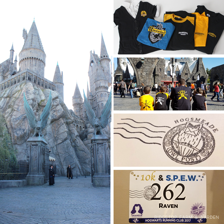 Ridgetop Runner | 2017 Race Recap | Hogwarts Running Club | Universal Studios Hollywood