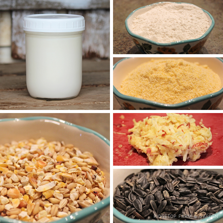 Ridgetop Farm and Garden | How to Make Suet