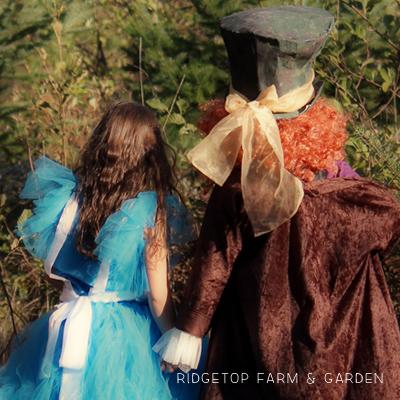 DIY Alice in Wonderland Costumes