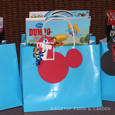 Disney Goodie Bags