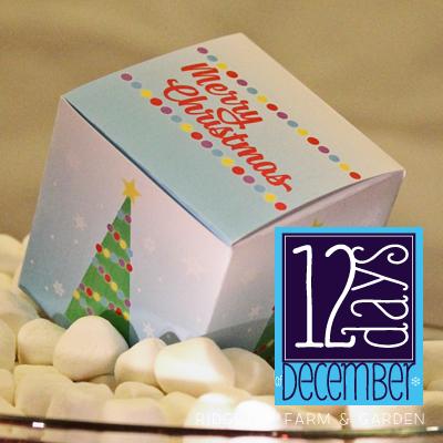 12 Days: Christmas Gift Box Printable
