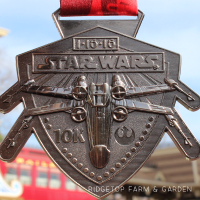 2016 Race Recap – Star Wars 10K
