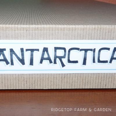 Continent Box – Antarctica