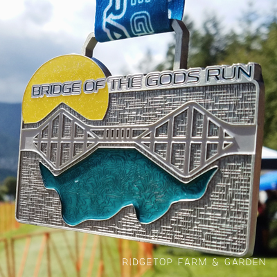 2016 Race Recap – Bridge of the Gods Half Marathon