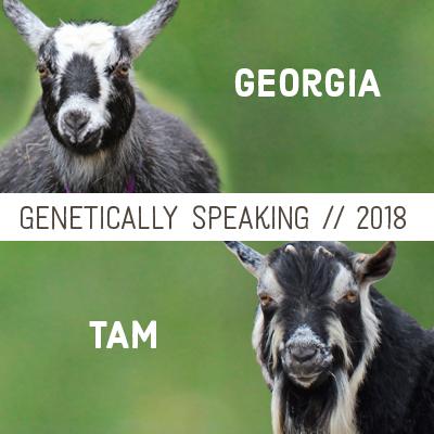 2018 Georgia & Tam Breeding