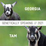 2021 Georgia & Tam Breeding